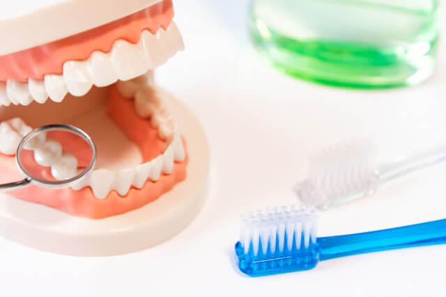 【予防歯科】お口のトラブルを未然に防ぎ大切な歯を健康に維持